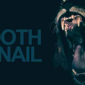 Tooth And Nail: The Meaning And Origin Of The Famous Expression