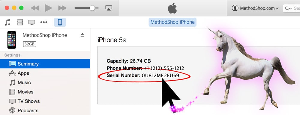How To Find UDID Tutorial: Click On Your Serial Number in iTunes