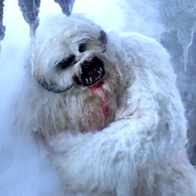 Wampa: Star Wars Ice Creature
