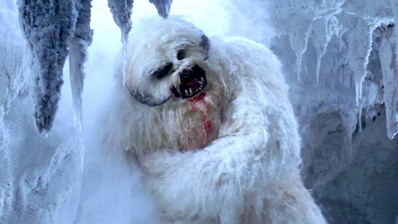 Wampa: Star Wars Ice Creature