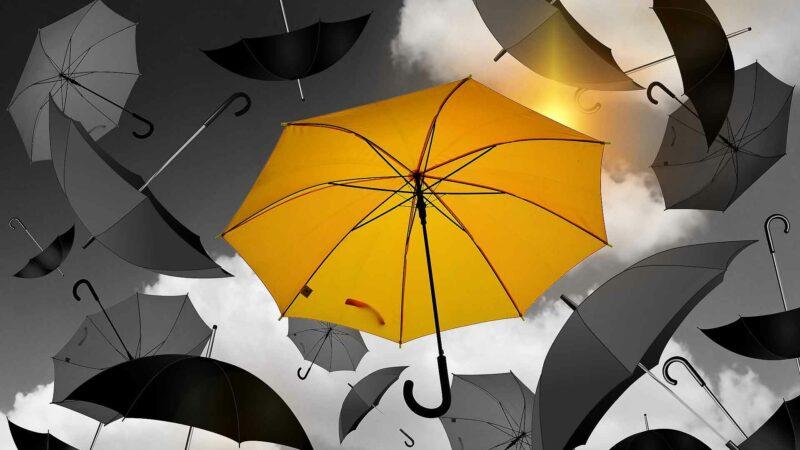 Umbrellas In The Wind